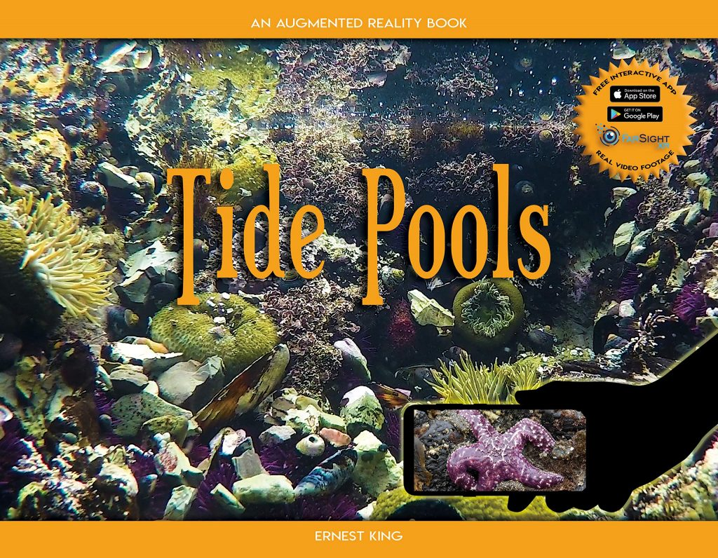 Tide Pools An Augmented Reality Book